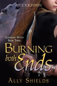 BurningBothEnds_ByAllyShields-453x680